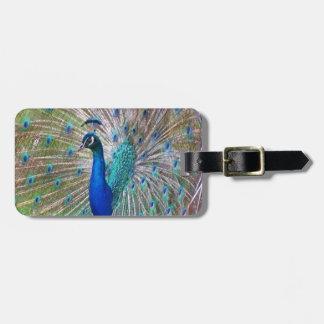 Peacock Bird Nature Wildlife Luggage Tag