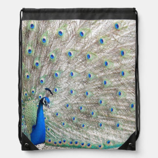 Peacock bird Wildlife Animal Feathers Cinch Bag