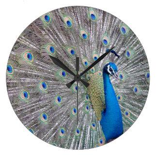 Peacock Bird Wildlife Animal Feathers Wall Clock