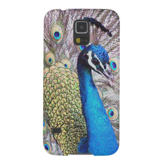 Peacock Bird Wildlife Animals Feathers Cases For Galaxy S5