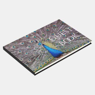 Peacock Bird Wildlife Animals Feathers Guest Book