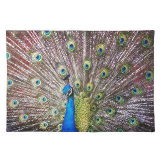Peacock Bird Wildlife Animals Feathers Place Mat