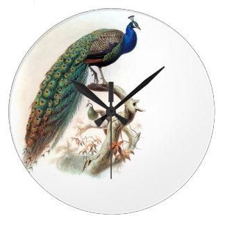 Peacock Bird Wildlife Animals Wall Clock