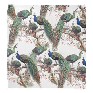 Peacock Birds Wildlife Animals Bandana