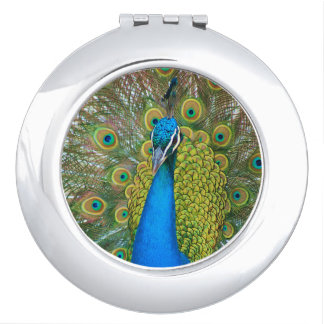 Peacock Blue Head with and Colorful Tail Feathers Compact Mirrors