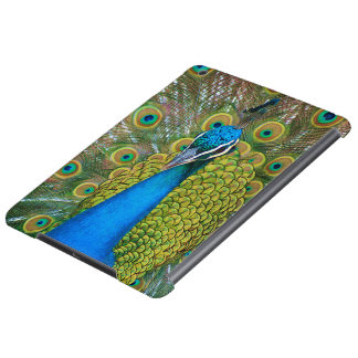 Peacock Blue Head with and Colorful Tail Feathers iPad Air Case