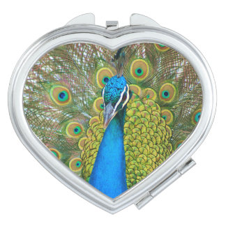 Peacock Blue Head with and Colorful Tail Feathers Vanity Mirror