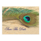 peacock blue  Save the Date Postcard