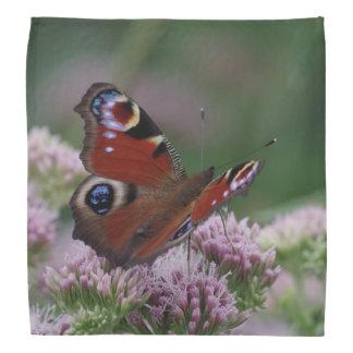 Peacock Butterfly Bandana