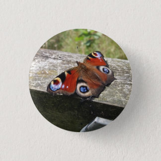 Peacock Butterfly Button