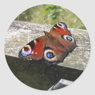Peacock Butterfly Classic Round Sticker