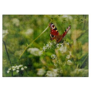 Peacock Butterfly In Green Summer Meadow Boards