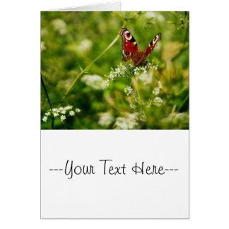 Peacock Butterfly In Green Summer Meadow Card