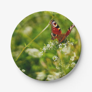 Peacock Butterfly In Green Summer Meadow Paper Plate