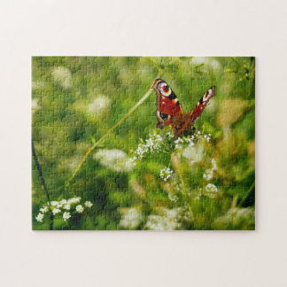 Peacock Butterfly In Green Summer Meadow Puzzles