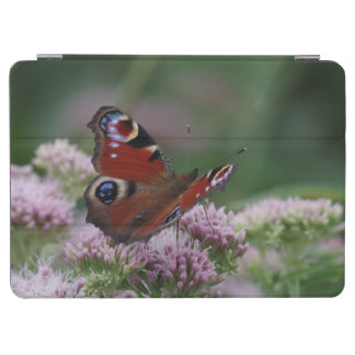 Peacock Butterfly iPad Cover
