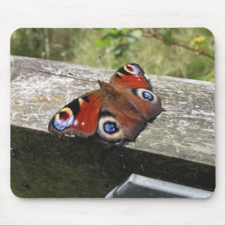 Peacock Butterfly Mousemat Mouse Pad
