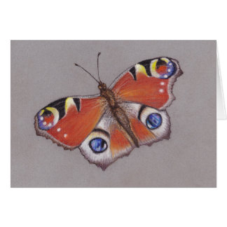 Peacock Butterfly Note Card/ Blank inside Card