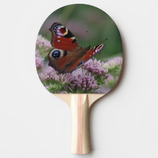 Peacock Butterfly Ping Pong Paddle