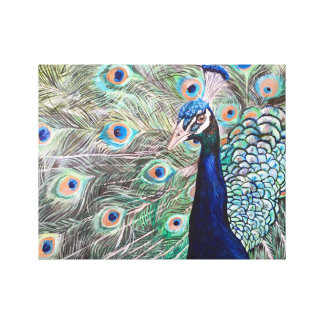 Peacock Canvas Wall Art
