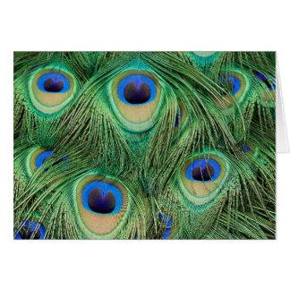 Peacock-Card - Customized Card