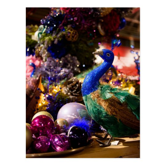 Peacock Christmas Design Postcard