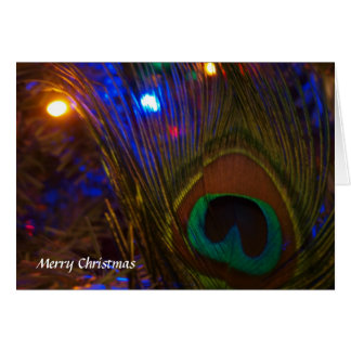Peacock Christmas Feather Card