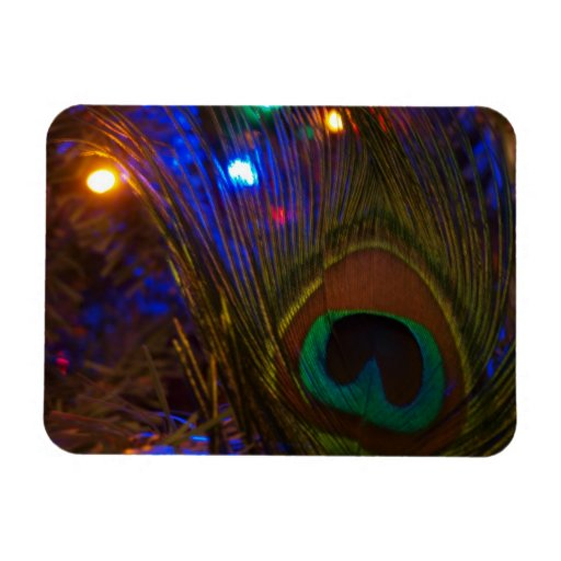 Peacock Christmas Feather Rectangle Magnet