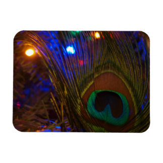 Peacock Christmas Feather Rectangular Photo Magnet