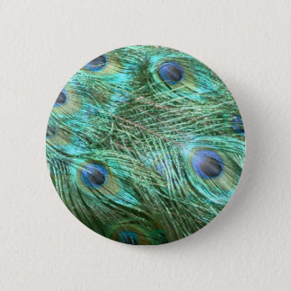 Peacock colours 2 inch round button