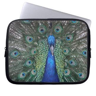 Peacock Daze Laptop Sleeve