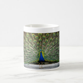 peacock design coffee mug