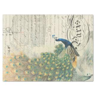 Peacock Ephemera Decoupage Paper