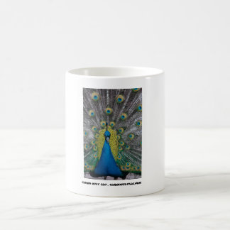 Peacock facing front coffee mug