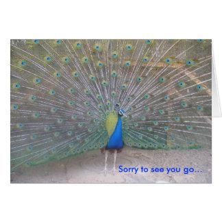 Peacock - Farewell Card