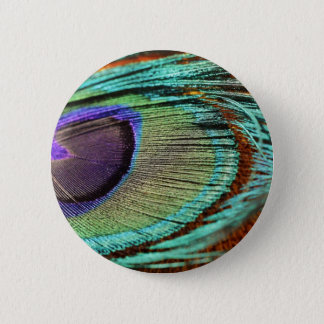Peacock feather against flower 2 inch round button