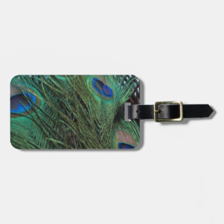 Peacock Feather and a Wicker Basket Luggage Tag