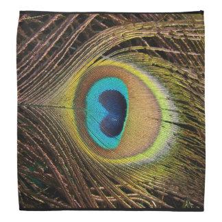 Peacock Feather Bandana