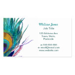 Peacock feather business card template
