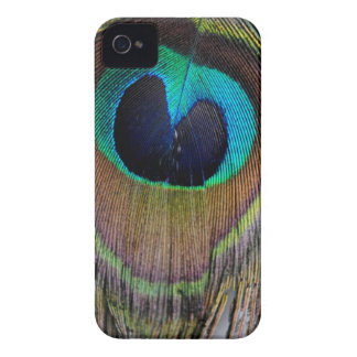 Peacock Feather Case Mate iPhone 4 Case