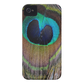 Peacock Feather Case Mate iPhone 4 ID Case