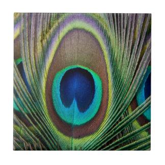 Peacock feather ceramic tile