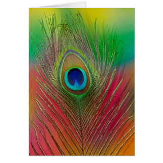 Peacock feather close-up card