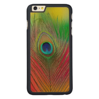 Peacock feather close-up carved maple iPhone 6 plus case