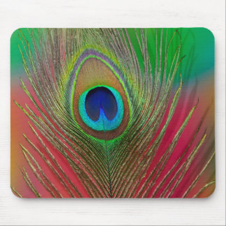 Peacock feather close-up mouse pad