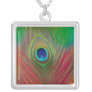 Peacock feather close-up silver plated necklace