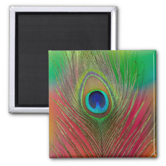 Peacock feather close-up square magnet