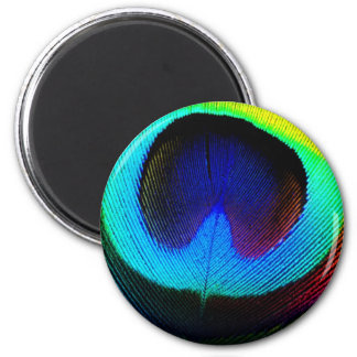 Peacock Feather Design 2 Inch Round Magnet