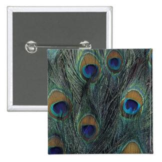 Peacock feather design 2 inch square button