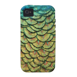 Peacock Feather Design Vibe iPhone 4 Covers